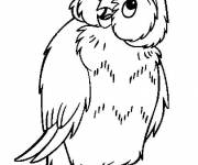 Free coloring and drawings An owl Coloring page