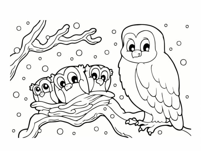 Free coloring and drawings An owl and her children Coloring page