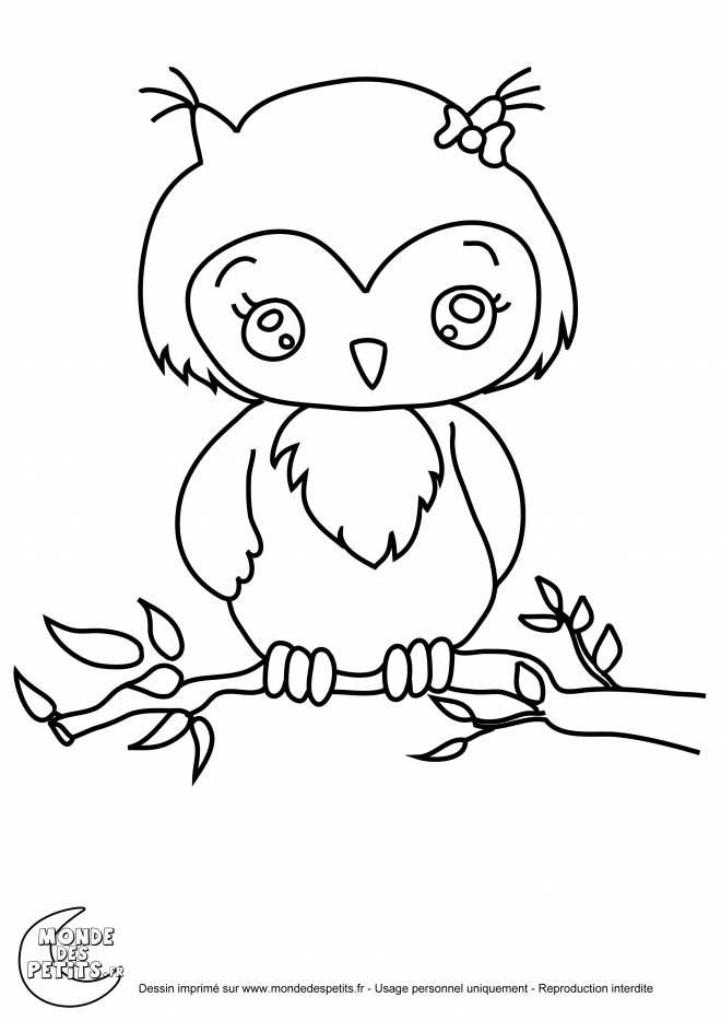 Free coloring and drawings Cute owl Coloring page
