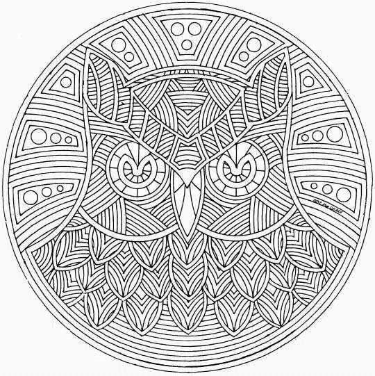 Free coloring and drawings Decorative owl Coloring page