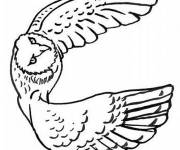 Coloring pages Flying owl