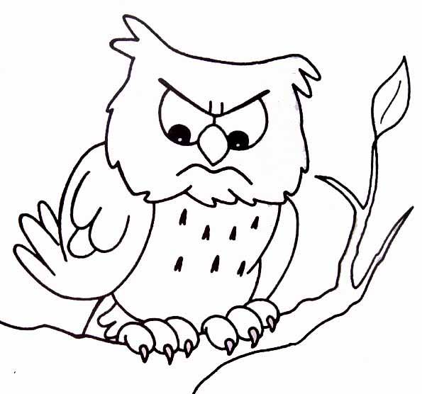 Free coloring and drawings Nervous owl Coloring page
