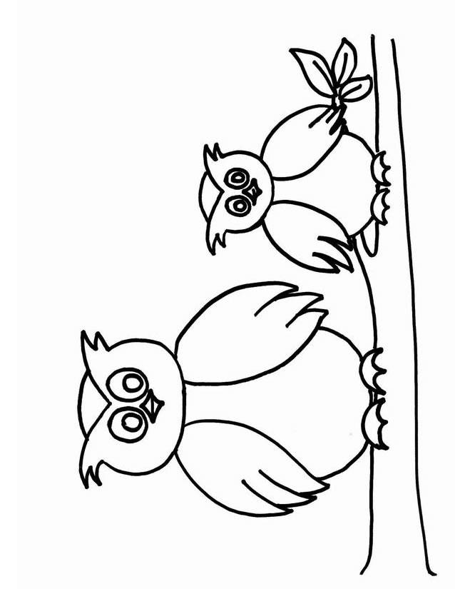 Free coloring and drawings Owl and cub on the tree Coloring page