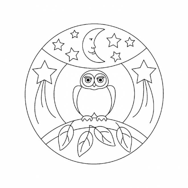 Free coloring and drawings Owl and the night Coloring page