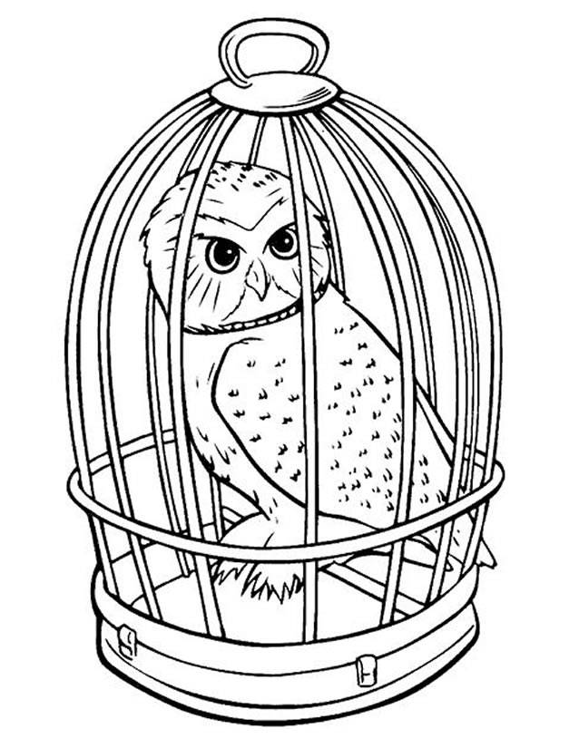 Free coloring and drawings Owl in his cage Coloring page