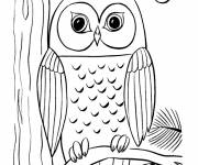 Coloring pages Owl with big eyes