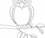 Coloring pages Surprised owl