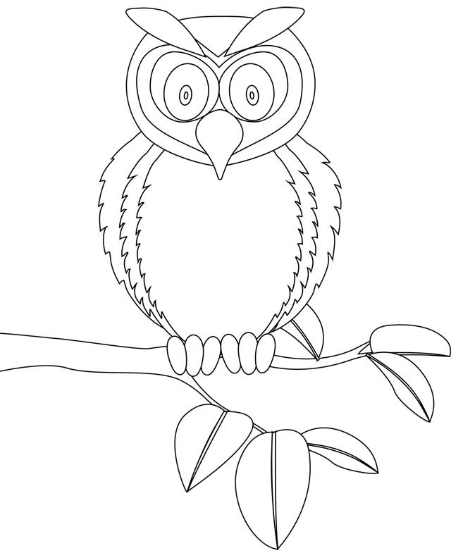 Free coloring and drawings Surprised owl Coloring page