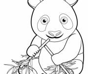 Coloring pages Baby Panda
