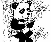 Coloring pages Little panda on the tree