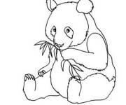 Coloring pages Panda simple
