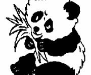 Coloring pages Panda while eating