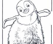 Coloring pages Cartoon penguin