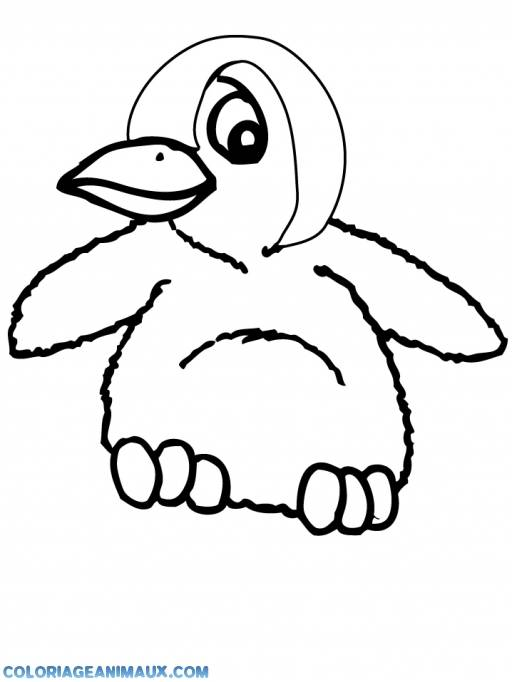 Free coloring and drawings Color drawing penguin Coloring page