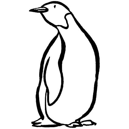 Free coloring and drawings Color penguin Coloring page