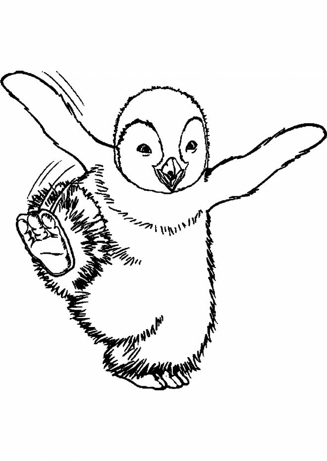 Free coloring and drawings Little penguin dancing Coloring page