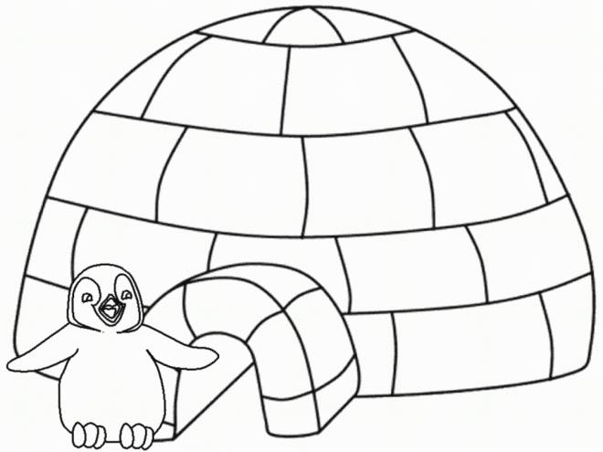 Free coloring and drawings Penguin in front of his house Coloring page