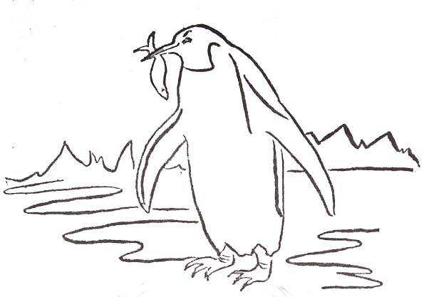 Free coloring and drawings Penguin peach Coloring page