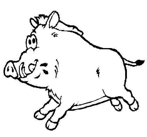 Free coloring and drawings A boar Coloring page