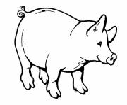 Free coloring and drawings Maternal pig Coloring page