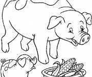 Free coloring and drawings Pig and baby Coloring page