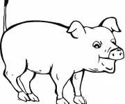 Free coloring and drawings Pig with open mouth Coloring page