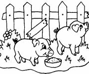 Free coloring and drawings Pigs eating Coloring page
