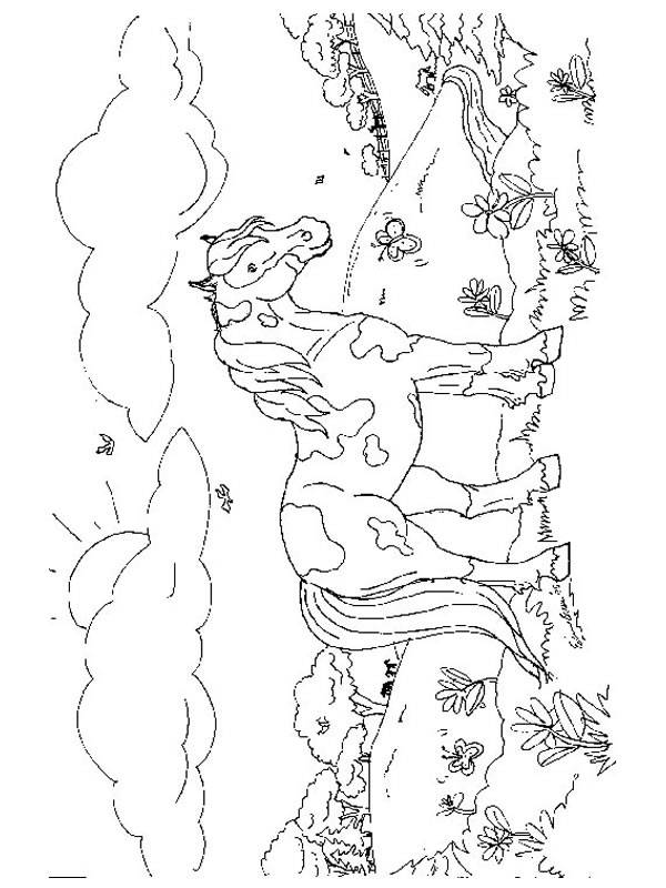 Free coloring and drawings A multicolored pony Coloring page