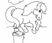 Coloring pages Outdoor pony
