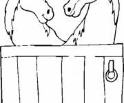 Free coloring and drawings Pony Club Coloring page