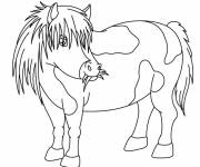 Coloring pages Pony eats grass