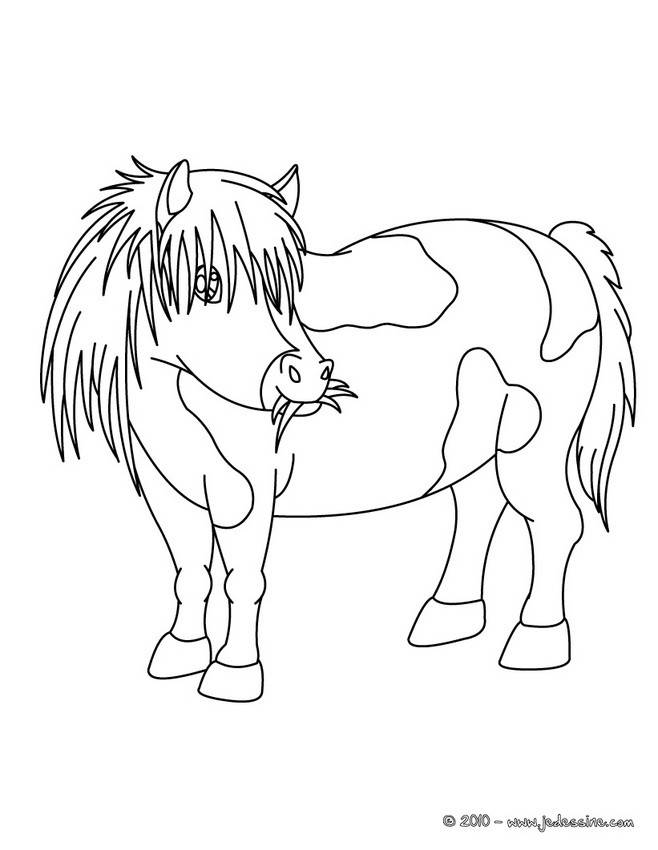 Free coloring and drawings Pony eats grass Coloring page
