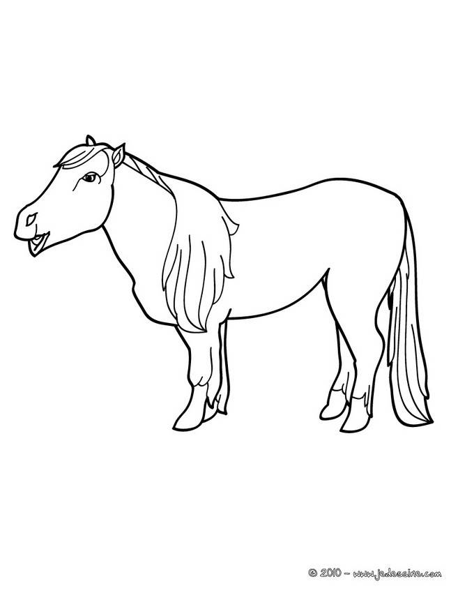 Free coloring and drawings Pony for kids Coloring page