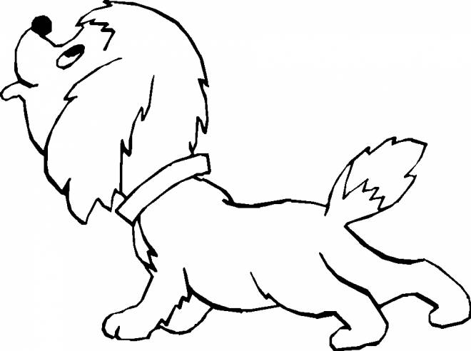 Free coloring and drawings Beautiful puppy Coloring page