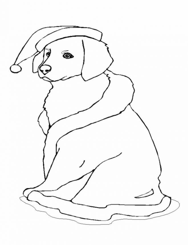Free coloring and drawings Christmas Dog Coloring page