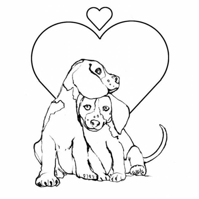 Free coloring and drawings Dogs in love Coloring page
