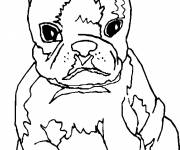 Coloring pages Nasty puppy