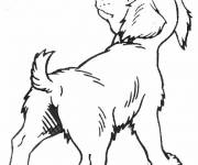 Free coloring and drawings Pencil puppy Coloring page