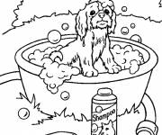 Coloring pages Puppy and bath