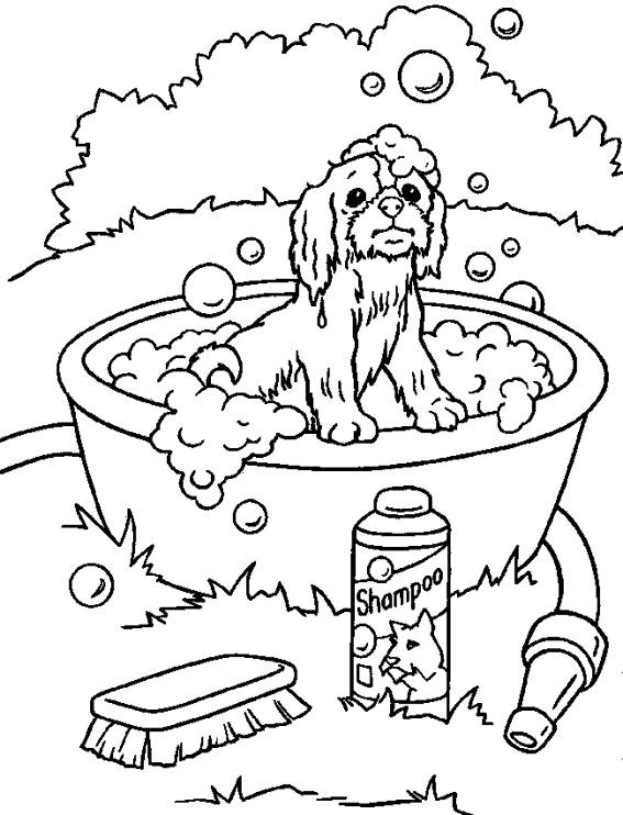 Free coloring and drawings Puppy and bath Coloring page