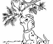 Coloring pages Puppy and birds