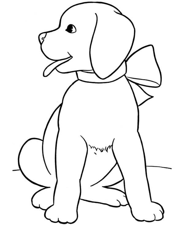 Free coloring and drawings Puppy to color Coloring page