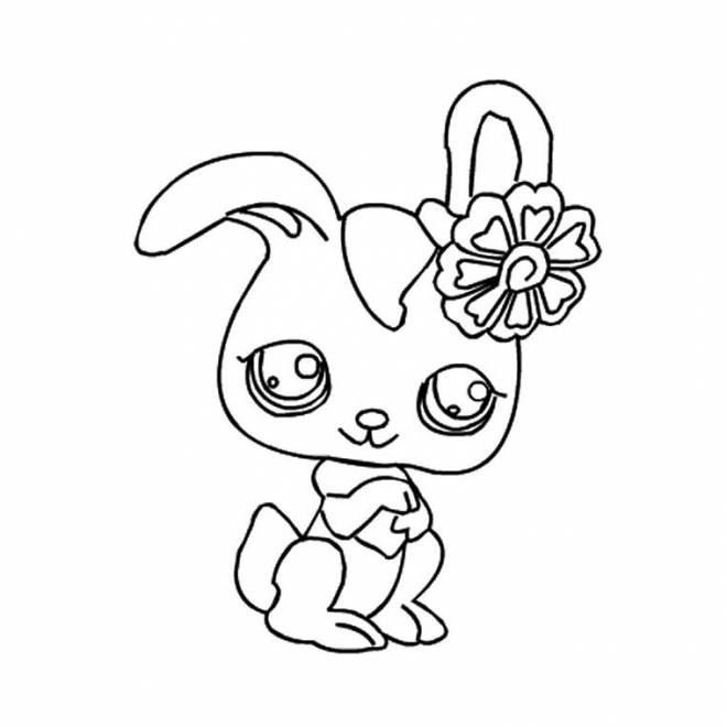 Free coloring and drawings A beautiful Rabbit Coloring page