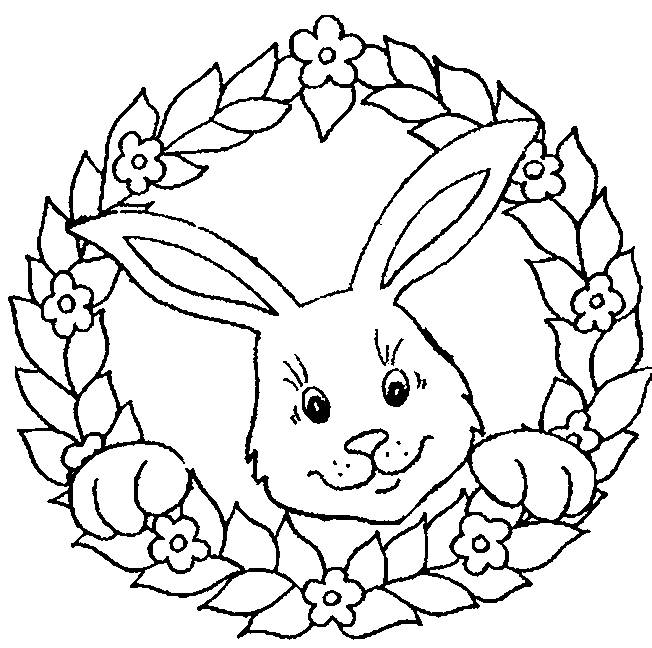 Free coloring and drawings Download rabbit Coloring page