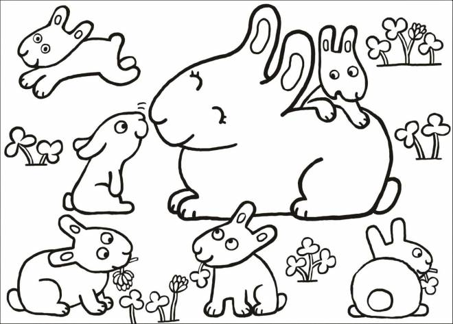 Free coloring and drawings Family rabbits Coloring page