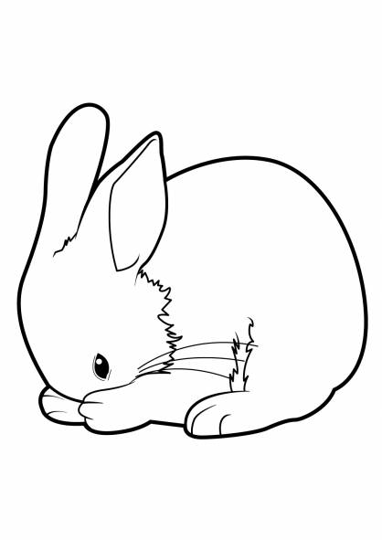 Free coloring and drawings Rabbit cleans himself Coloring page