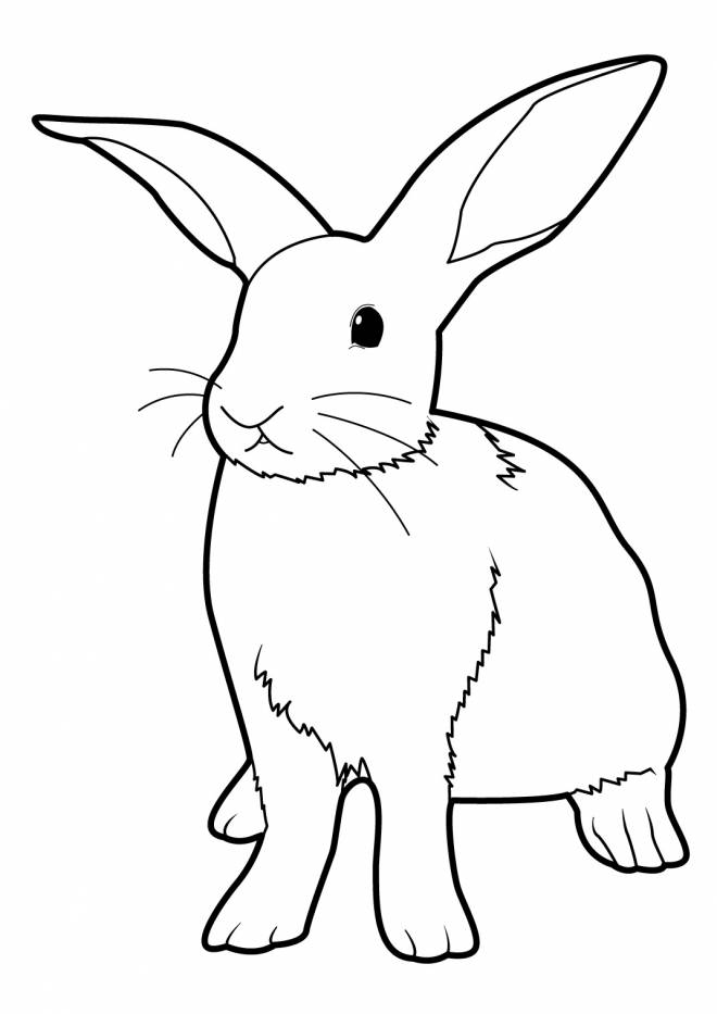 Free coloring and drawings Stylized rabbit Coloring page