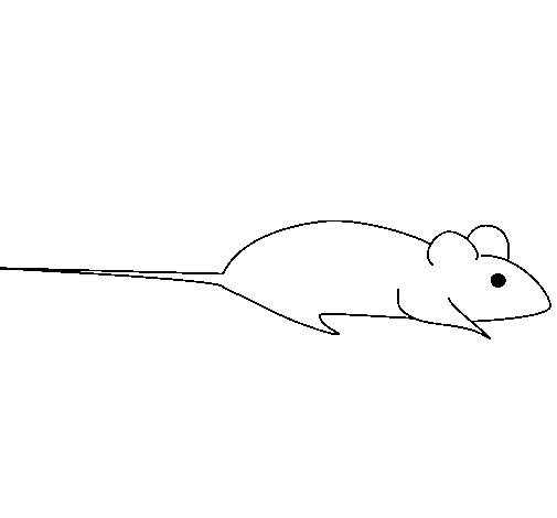 Free coloring and drawings A stylized mouse Coloring page