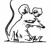 Coloring pages Humorous rat
