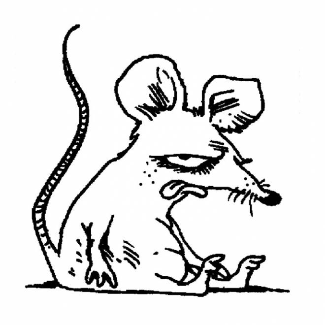 Free coloring and drawings Humorous rat Coloring page
